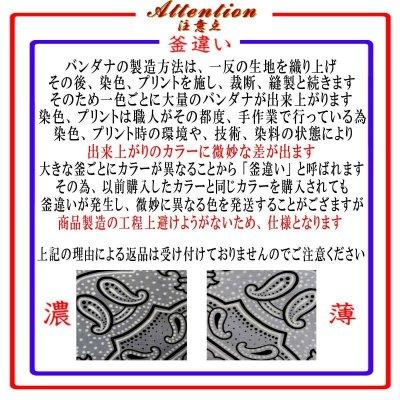 画像4: 日本製バンダナ ペイズリーC